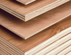 Plywood & Block Boards